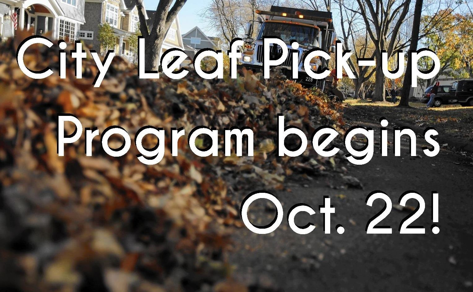 Leaf pick up