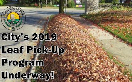 Image - 2019 Leaf Pick-Up for News Flash