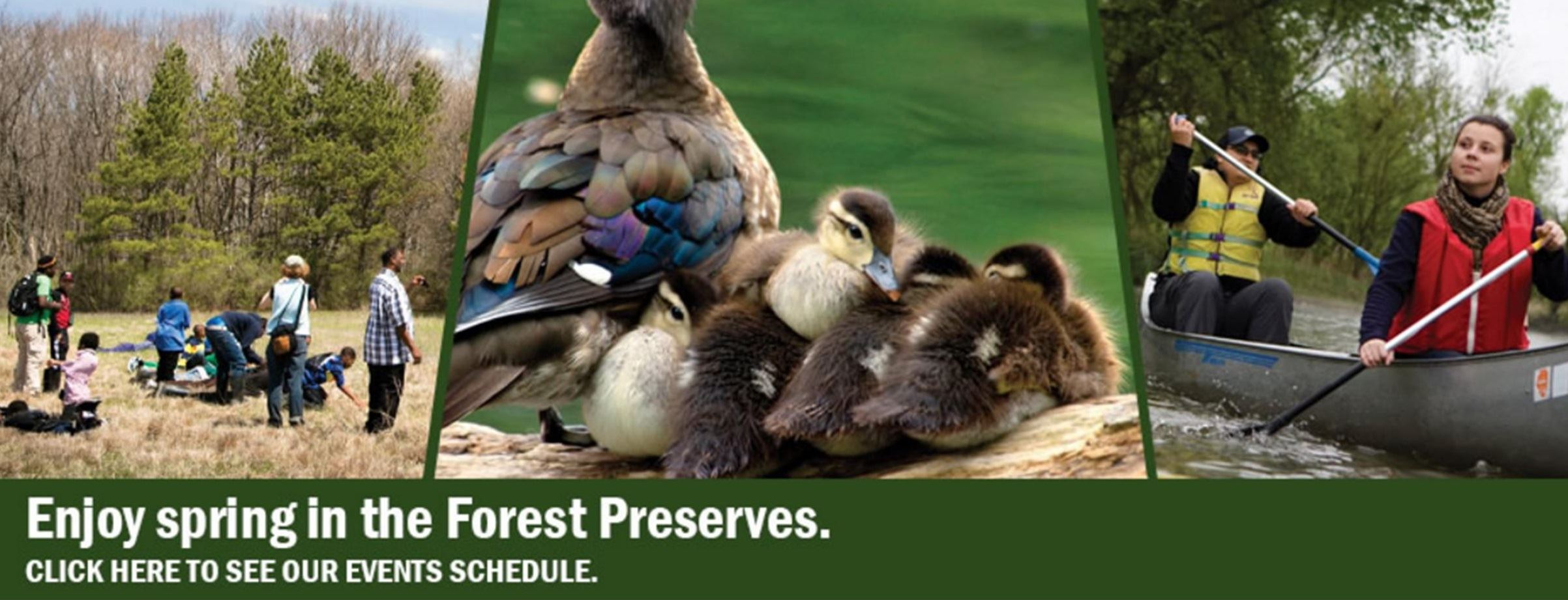 Forest Preserve District of Cook County Spring Events