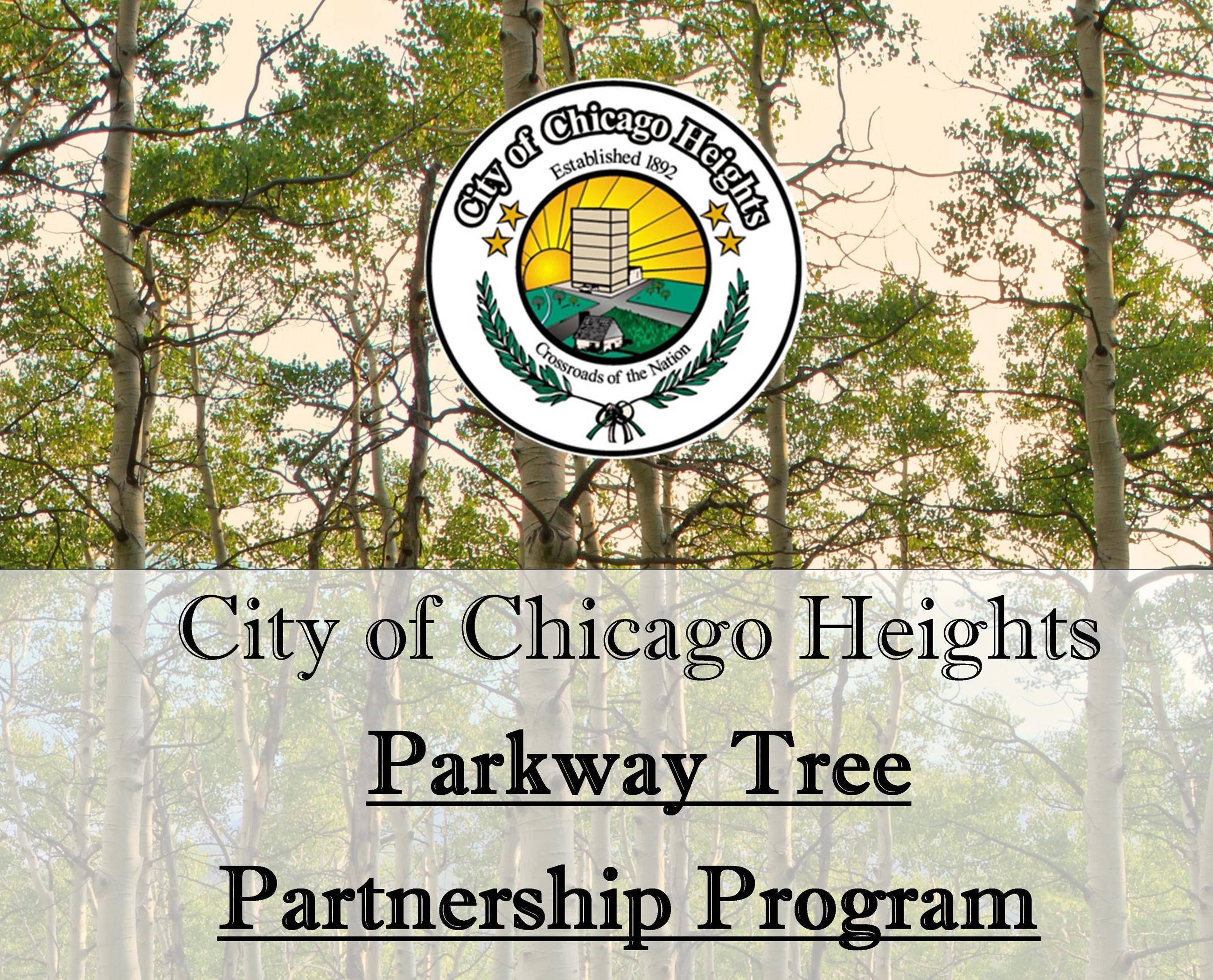City of Chicago Heights Parkway Tree Partnership Program ReOpens